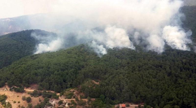 Kazdağları'nda Ciğerlerimizi Yakan Yangında Korkunç Gerçek Ortaya Çıktı: Kundaklama!