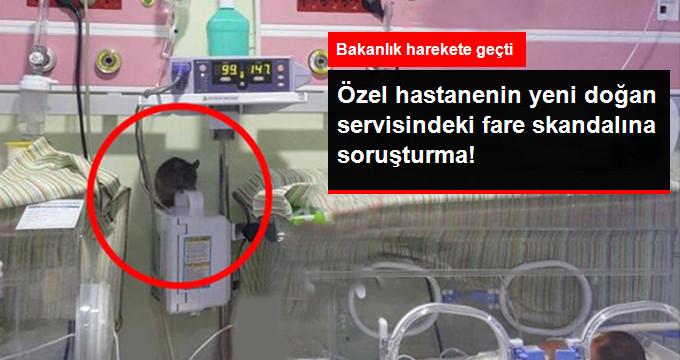 Sağlık Bakanlığı Özel Hastanenin Yenidoğan Servisindeki Fare Skandalına İlişkin Soruşturma Başlattı