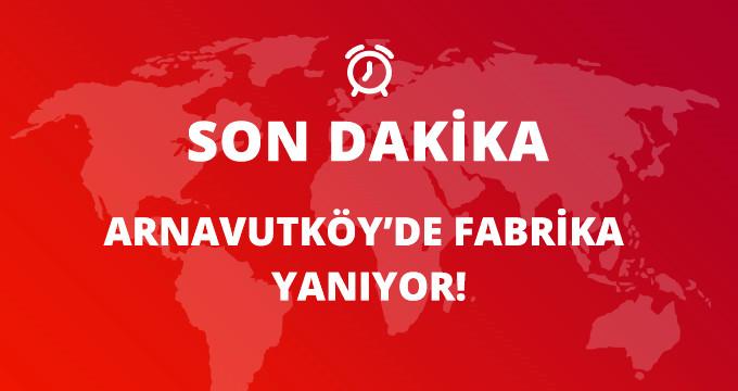 Son Dakika! Arnavutköy'de Boya Fabrikasında Büyük Yangın, Çok Sayıda İtfaiye Müdahale Ediyor!