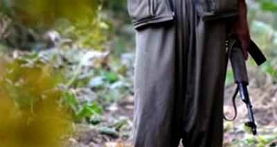 Diyarbakır'da Teröristler Karakola Malzeme Taşıyan TIR'ı Yaktı, Şoförünü Kaçırdı