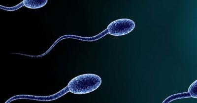 İnsanlığı Tehdit Eden Tehlike! Batılı Ülkelerde Sanayileşme Arttıkça Erkeklerde Sperm Sayısı Düşüyor!