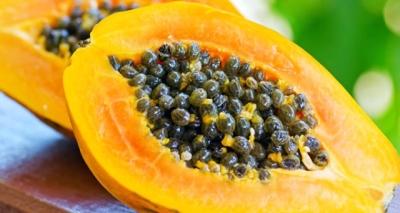Papaya Yiyenlere Bulaşan Salmonella Virüsü Hızla Yayılıyor!