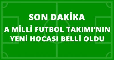 Son Dakika! A Milli Futbol Takımının Yeni Hocası Şenol Güneş Oldu!