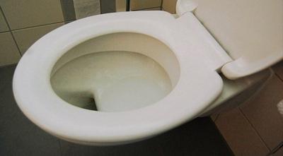 Soyduğu Evde Tuvalete Giren Hırsız, Sifonu Çekmeyi Unutunca Yakalandı!