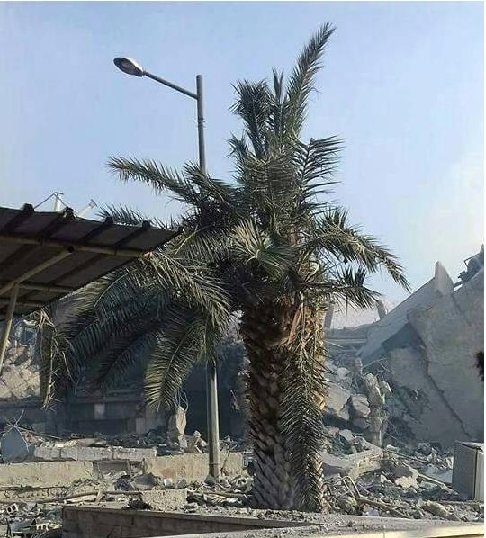 ABD'nin Vurduğu Suriye'de Bilanço Gün Ağarınca Ortaya Çıktı!