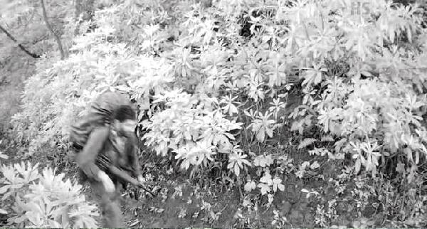 Eren Bülbül'ü Şehit Eden Teröristler Öldürüldü! İşte O Teröristlerin Ellerindeki Sarı Eldivenin Sırrı