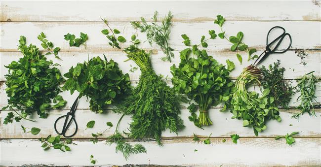 Fazla Kilolarınızdan Hızlı Şekilde Kurtulmanızı Sağlayan 5 Yeşillik