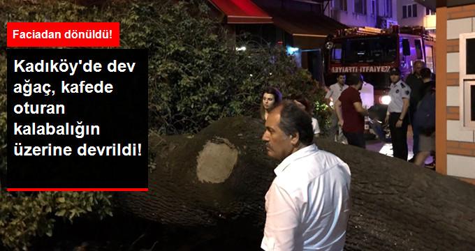 Kadıköy'de Kafede Oturanların Üstüne Ağaç Devrildi, Yaralılar Var!