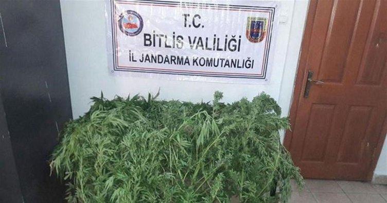 Tatvan'da Uyuşturucu Operasyonu Yapılan Adreste FETÖ Kitapları ve 1 Dolar Bulundu