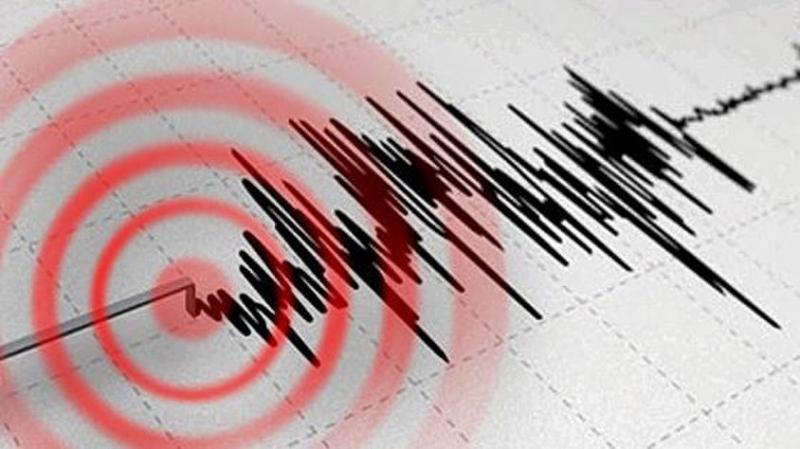 Tsunami Uyarıları Arka Arkaya Geldi! 7,3'lük Deprem Büyük Korku Yarattı