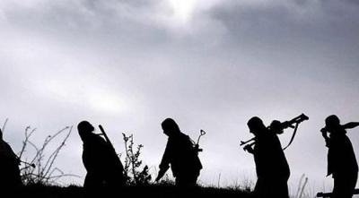 Bingöl'de Teröre Darbe! 4'ü Ölü 1'i Sağ Olmak Üzere 5 Terörist Ele Geçirildi!
