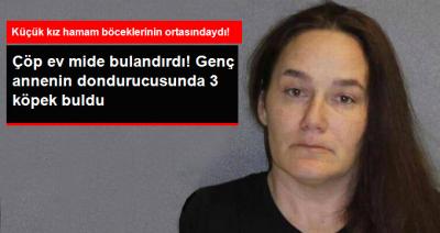 Polis İhbar Üzerine Genç Annenin Evini Bastı, Dondurucudan Üç Köpek, Evden Hamam Böcekleri Çıktı