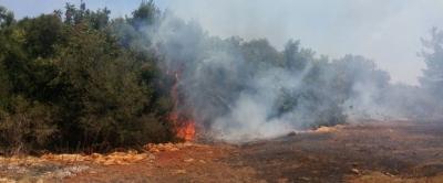 Son Dakika! Antalya'da Orman Yangını Çıktı, Evler Boşaltılıyor