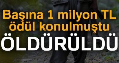 Son Dakika! Başına 1 Milyon Lira Ödül Konulan PKK'lı Terörist Öldürüldü!
