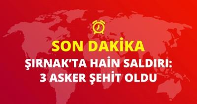 Son Dakika! Şırnak'ta Üs Bölgesindeki Askerlere Yemek Götüren Askeri Araca Hain Saldırı: 3 Asker Şehit!