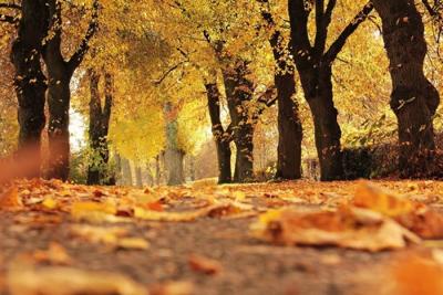 Sonbaharda Aşk Tazeleyeceğiniz 5 Rota