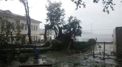 Tarihi Çınaraltı Meydanı Çınarsız Kaldı! İstanbul'da Fırtına Tarihi Çınaraltı'daki Çınarı da Devirdi!