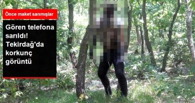 Tekirdağ'da Korkunç Olay! Ağaca Asılı Erkek Cesedini Gören Telefona Sarıldı