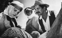 Yüz yılın en iyi Türk filmi